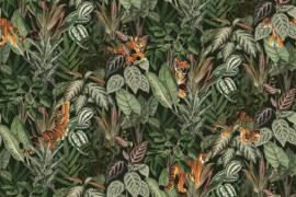 Mischievous TIGERS (3 kleuren)