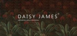 Daisy James THE JUNGLE2