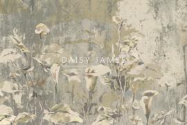 Daisy James THE PERIGONE (4 colors)