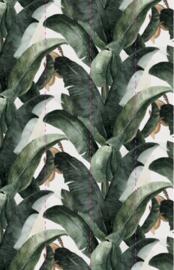 BOTANY WPLC0023 - 4 walls