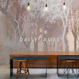 Daisy James THE  SUNSET