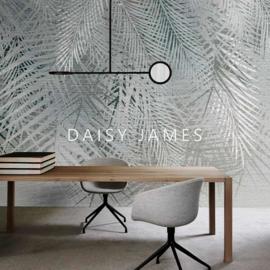 Daisy James THE FAN