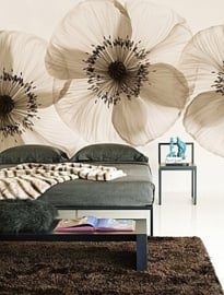 Wall and Deco OPIUM