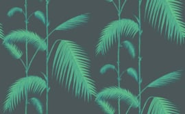 Icons PALM LEAVES (4 colors)