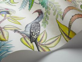 Ardmore Collection SAVUTI (7 kleuren)