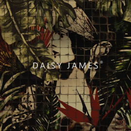 Daisy James THE ICON