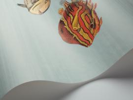 Fornasetti ACQUARIO (5 colors)
