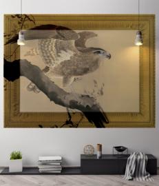 Framed Wallpaper EAGLE (2 kleuren)
