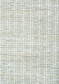 Thibaut SUTTON STRIPE (5 colors)