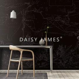 Daisy James THE MAP