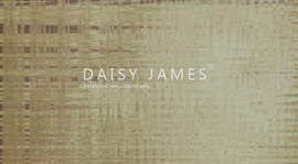 Daisy James THE VENEER