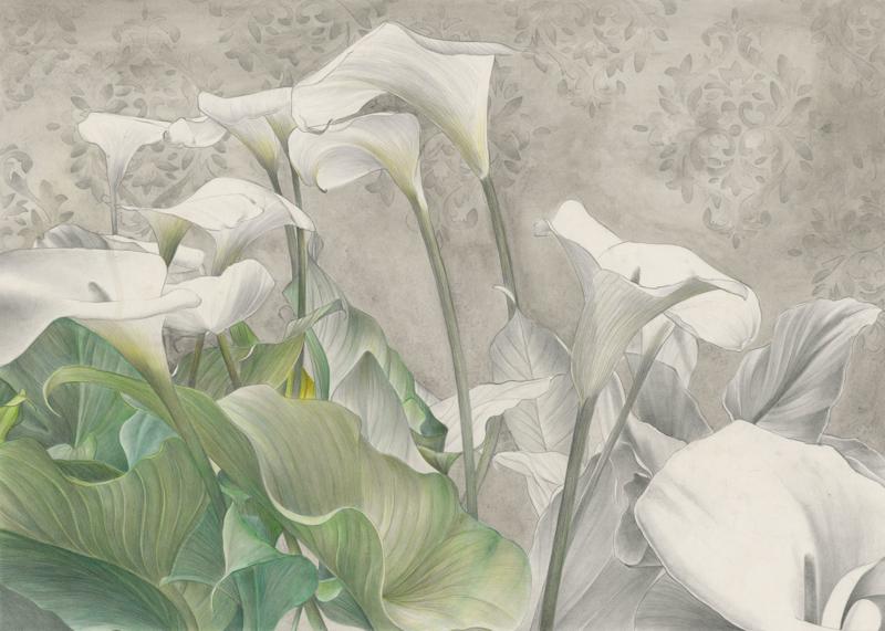 KALOS by Cristina Iotti