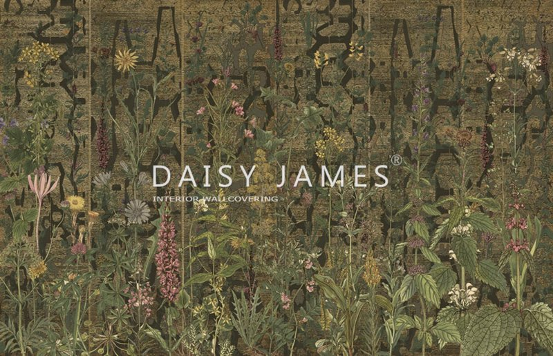 Daisy James THE WILD FLOWERS