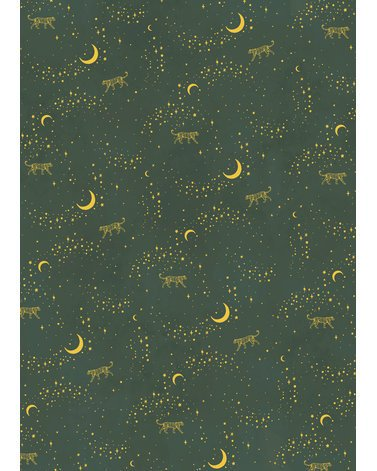 STARGAZER gold (several sizes)