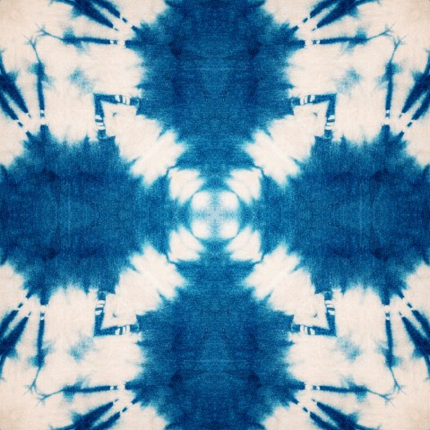 Mind The Gap SHIBORI BUTTERFLY