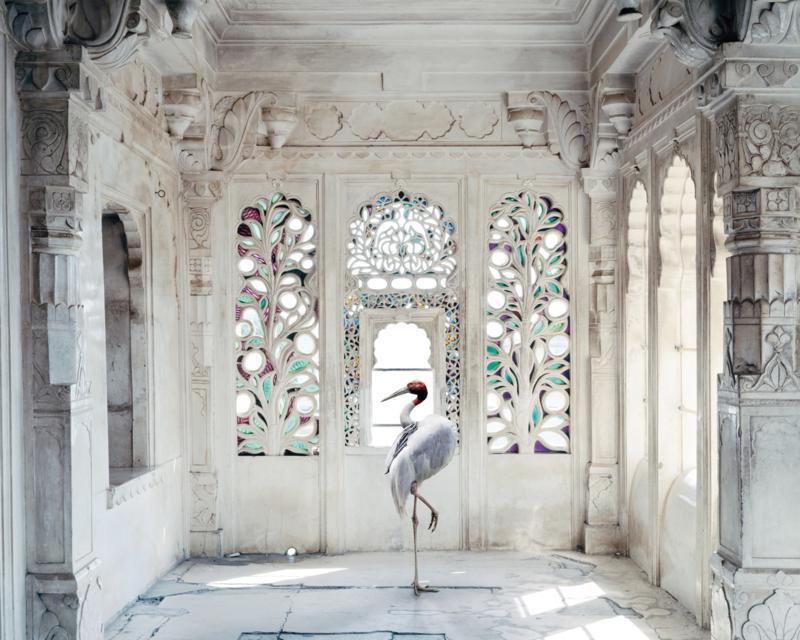 A PLACE LIKE AMRAVTI 2 by Karen Knorr