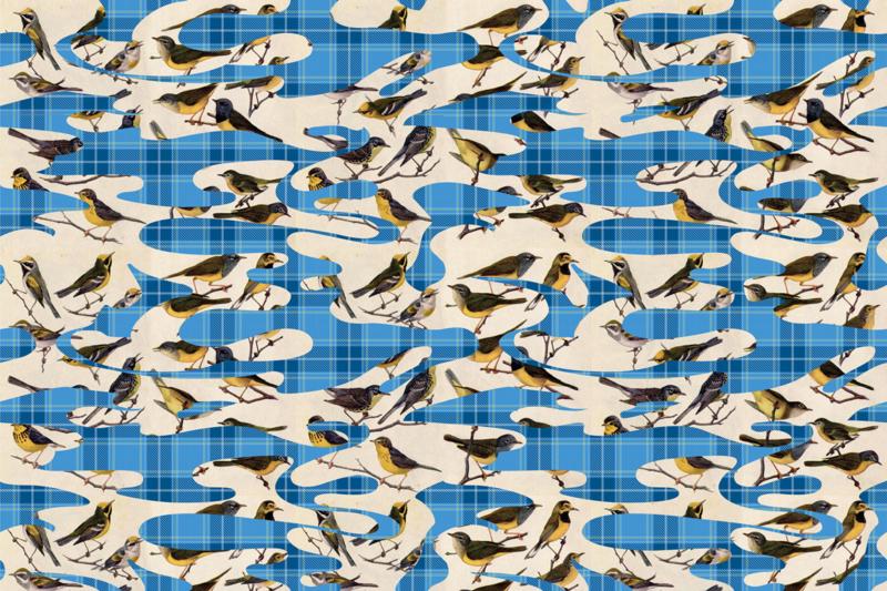 Glamora BIRDS