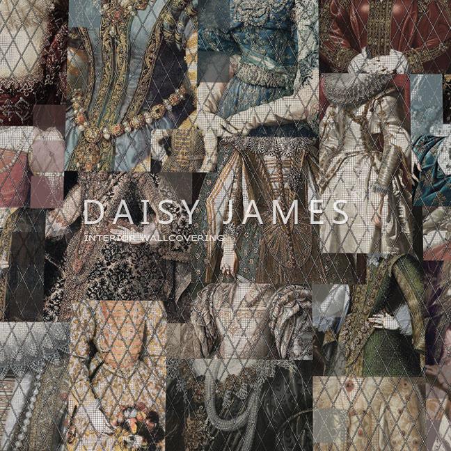 Daisy James THE ROBE