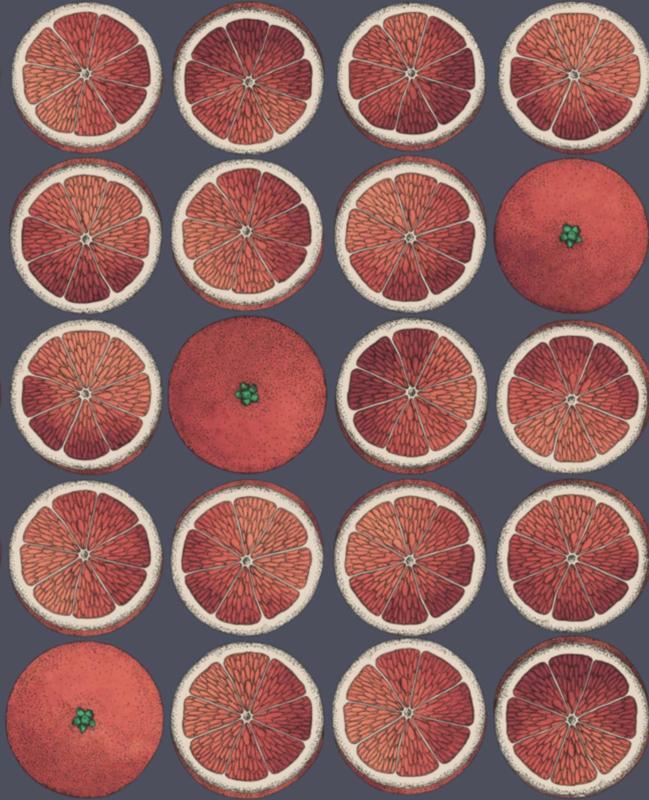 Fornasetti ARANCE red - 1 roll