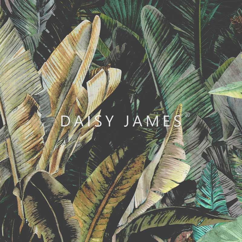 Daisy James THE MUSA