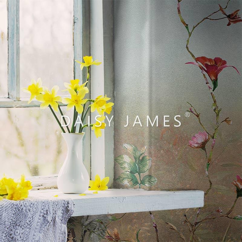 Daisy James THE DREAM