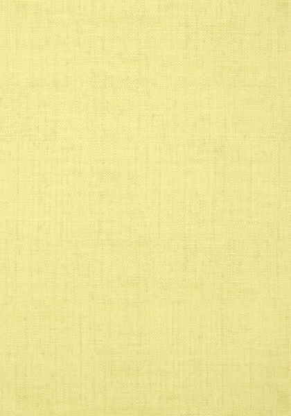 Thibaut BANKUN RAFFIA 3 (8 colors)
