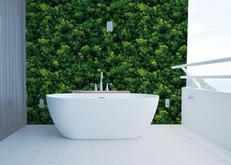 Green Wall plain