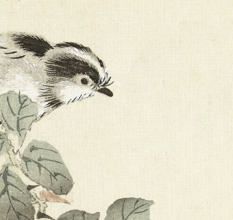 KitchenWalls LITTLE BIRD