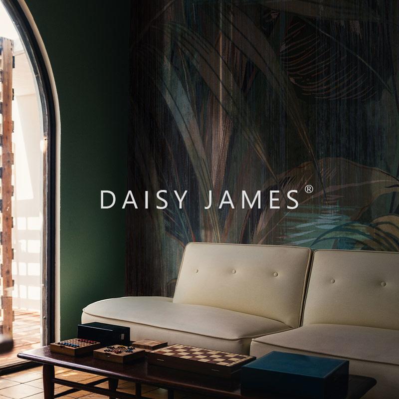 Daisy James THE WASH