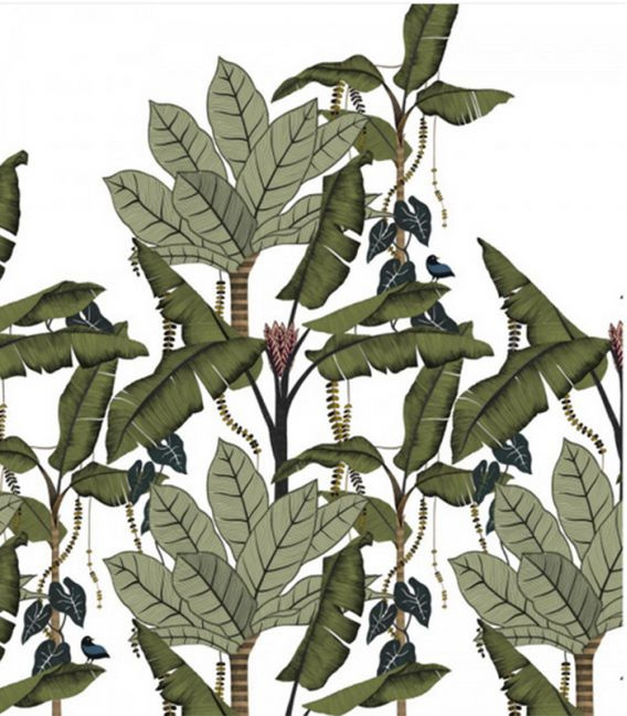 Casamance JANGALA (2 colors)