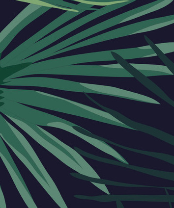 PALM LEAVES roll
