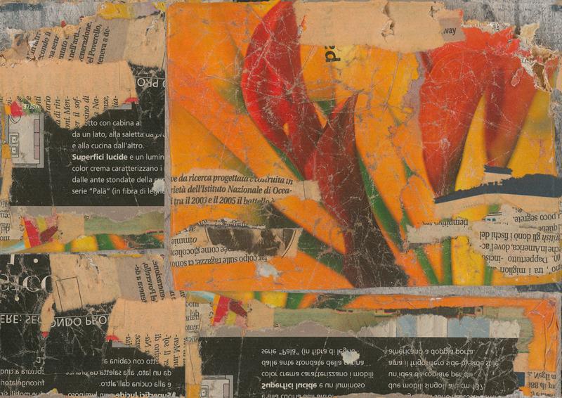 FLOWER - Leo Bellei