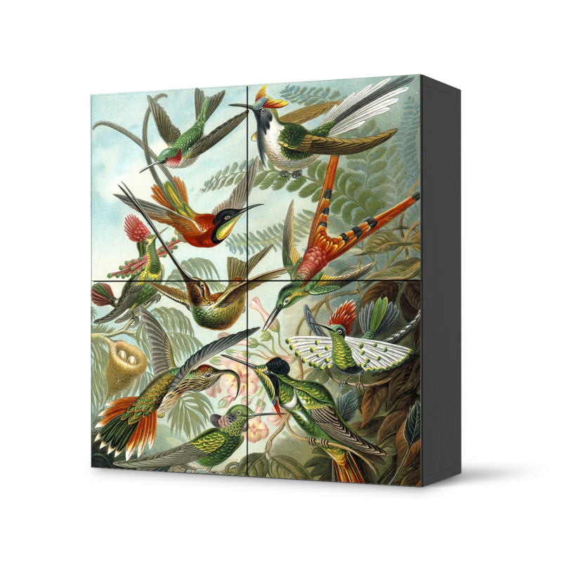 Besta doorsticker high HUMMINGBIRD