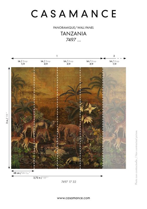 Casamance TANZANIA