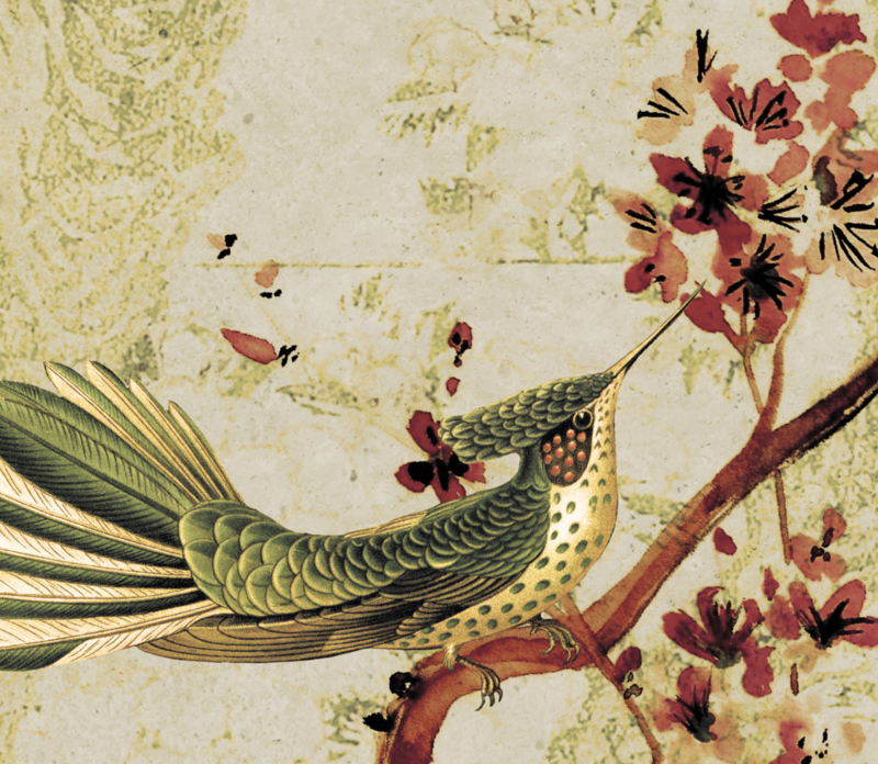 BIRDS & BUTTERFLIES vintage