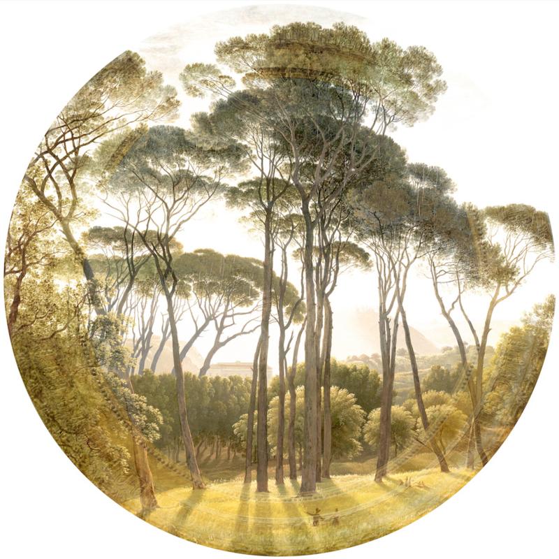 Framed Wallpaper circle SPRING FOREST