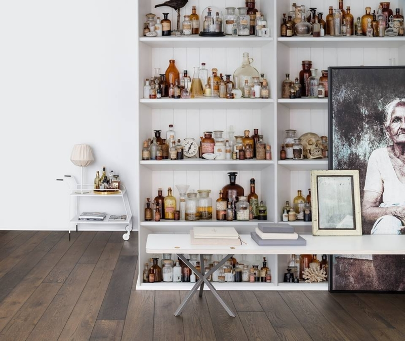 Cabinet of Curious