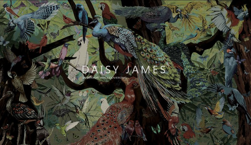 Daisy James THE FOUNDING FEATHERS