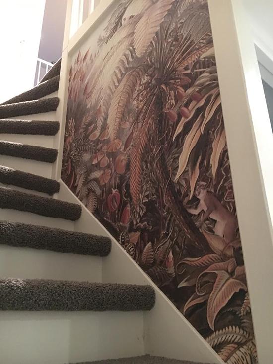 design wallpaper monkey jungle behangfabriek