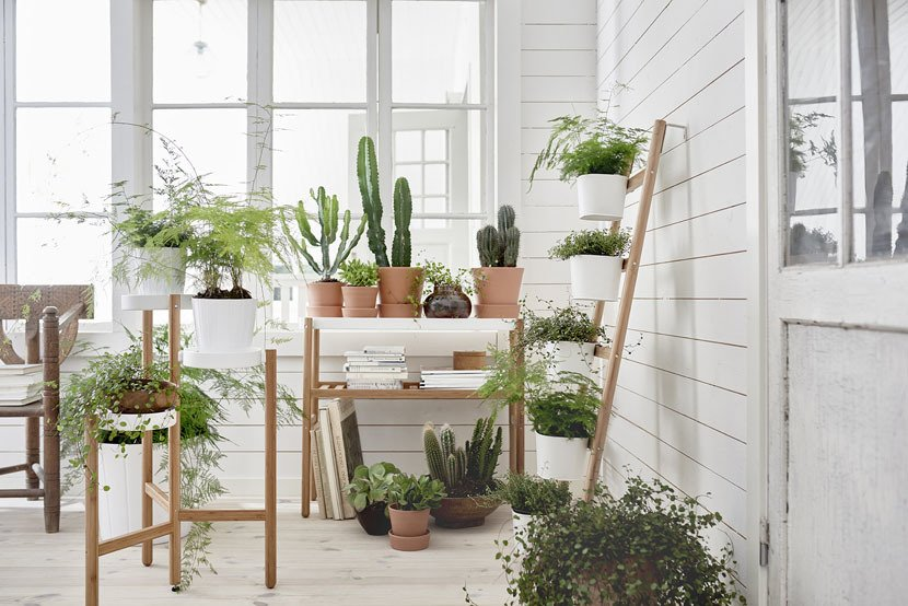 ikea plant stands satsumas