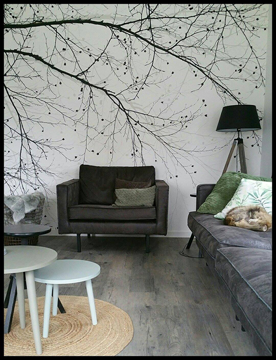 black beech wallpaper scandinavian surface