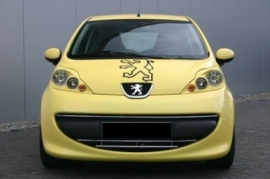 RVS Grille Peugeot 107