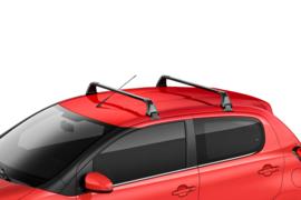 Allesdragers Citroën C1 5 deurs