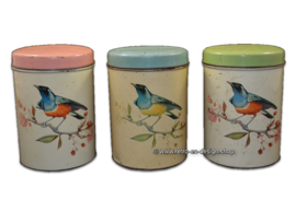 Complete series antiques/vintage bird tins made by 'De Gruijter'