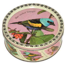 Rare vintage candy tin made by Mackintosh with images of various songbirds