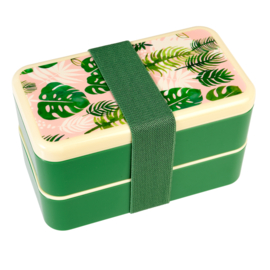 Bentobox tropische palm