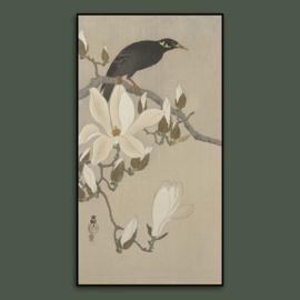 BLOSSOM BIRD  / OHARA KOSON