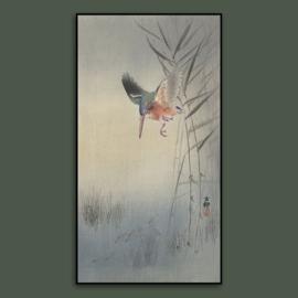 PARADISE BIRD 2  / OHARA KOSON