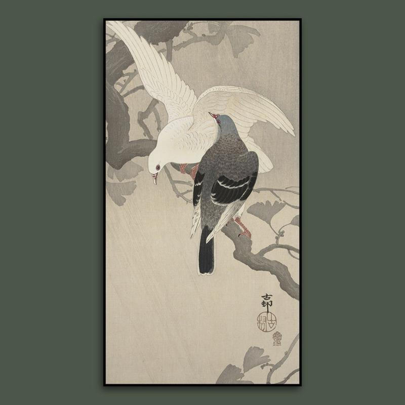 DOVES LOVEBIRD  / OHARA KOSON