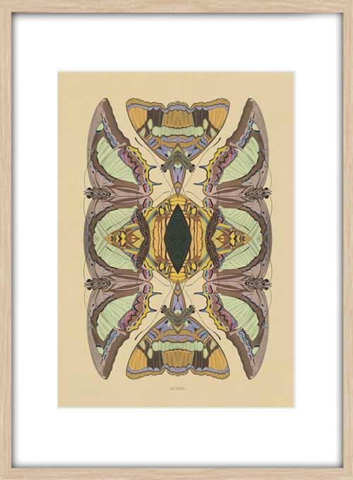ARTWORK B68